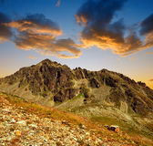 Mountain landscape near Davos at sunset Royalty Free Stock Image