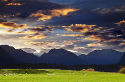Mountain landscape, New Zealand Royalty Free Stock Photos