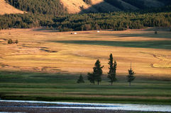 Mountain landscape in northern Mongolia Royalty Free Stock Photography