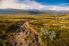 Mountain landscape Norway national park Dovre Stock Photo