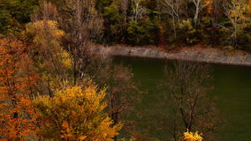 Mountain landscape in november with treetop and river stock footage