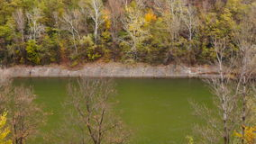 Mountain landscape in november with treetop and river, tilt up stock video footage