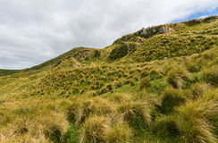 Mountain landscape of Otago Peninsula New Zealand Stock Photo