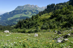 Mountain landscape over Engelberg Royalty Free Stock Photo
