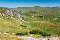Mountain landscape of Parang Mountains in Romania Stock Image