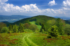 Mountain landscape with path Stock Images