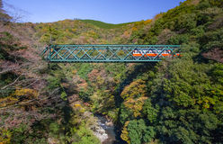 Mountain landscape with railway bridge and train Stock Photos