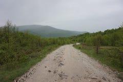Mountain landscape on a rainy day. Carpathian mountains. stock photography