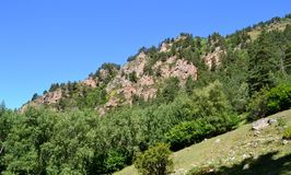 Mountain landscape. Reserve Teberda, Karachay-Cherkessia Republic, Russia. Photo taken on: July 27 Saturday, 2013 Royalty Free Stock Photography