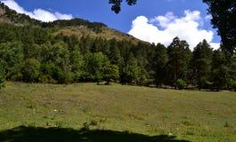 Mountain landscape. Reserve Teberda, Karachay-Cherkessia Republic, Russia. Photo taken on: July 27 Saturday, 2013 Stock Photography