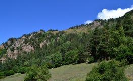 Mountain landscape. Reserve Teberda, Karachay-Cherkessia Republic, Russia. Photo taken on: July 27 Saturday, 2013 Royalty Free Stock Photos