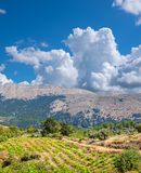 Mountain landscape. Rhodes, Greece stock photography
