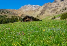 Mountain landscape. Ridanna Valley, South Tyrol, Trentino Alto Adige, Italy. Mountain landscape. Ridanna Valley, South Tyrol, Trentino Alto Adige, northern italy royalty free stock photos