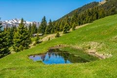 Mountain landscape. Ridanna Valley, South Tyrol, Trentino Alto Adige, Italy. Mountain landscape. Ridanna Valley, South Tyrol, Trentino Alto Adige, northern italy stock photo