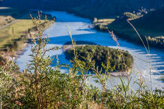 Mountain landscape with river and grass at sunny day Royalty Free Stock Photo