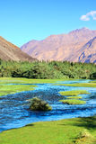 Mountain landscape with river in valley. Himalayas Royalty Free Stock Image