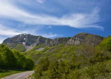 Mountain landscape. The road leading to mountains, trees, cloudly sky, spring day Royalty Free Stock Image