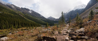 Mountain landscape in the Rocky Mountain region of Lake Louise royalty free stock photo