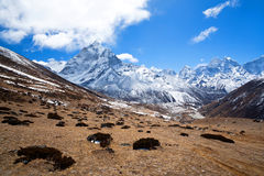 Mountain landscape in Sagarmatha National Park, Nepal Stock Photos