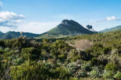 Mountain landscape in Sardinia Stock Photography