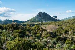 Mountain landscape in Sardinia. Mountain landscape along Road 125 between Baunei and Dorgali, Sardinia, Italy Stock Photography