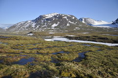Mountain Landscape in Sarek National Park. North Sweden Stock Photography