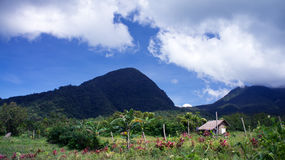 Mountain landscape scenery. A mountain landscape scene taken in the Philippines with a wooden hut and a garden in the foreground and the mountains in the Stock Photo