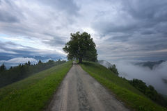 Mountain landscape shortly after spring rain. Slovenian Alps. Forest Road, venerable tree, fog, clouds and peaks. The village of J Stock Photography