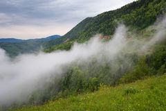 Mountain landscape shortly after spring rain. Slovenian Alps. Forest Road, venerable tree, fog, clouds and peaks. The village of J Stock Images