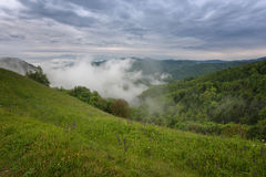 Mountain landscape shortly after spring rain. Slovenian Alps. Forest Road, venerable tree, fog, clouds and peaks. The village of J Royalty Free Stock Photos