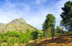Mountain landscape in Sierra de Grazalema Natural Park, province of Cádiz, Spain Stock Photos