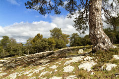 Mountain landscape. In the Sierra de Segura. Andalusia Royalty Free Stock Photos