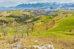 Mountain landscape Sirnea Romania Stock Photography