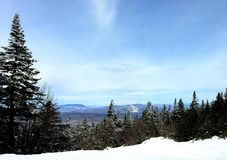 Mountain Landscape. Skiing pines snow pinetrees adventure outdoors vermont bluesky royalty free stock image
