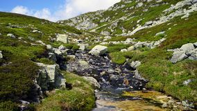 Small river in the mountain. stock photography