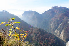 Mountain landscape from Sokolica Royalty Free Stock Image
