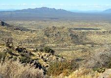 Beautiful desert landscape Royalty Free Stock Photography