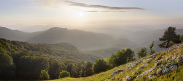 Mountain landscape. Spring beautiful forest and mountain Stock Images