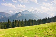 Mountain landscape. Spring mountain landscape, Tatry, Poland royalty free stock photography