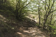 Hiking pathway- journey through roads, mystical nature. Mountain landscape- springtime mystical nature. Journey through roads and stone- hiking pathways royalty free stock photography