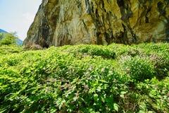 Mountain landscape on springtime Stock Image