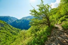 Mountain landscape on springtime Royalty Free Stock Photo
