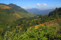 Mountain landscape in Sri Lanka Royalty Free Stock Photo