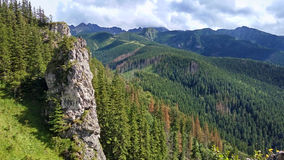 Mountain landscape with a stone cliff and forest. View from Mount Nosal, Tatry, Poland. A mountain landscape with a stone cliff and a forest of coniferous trees royalty free stock image