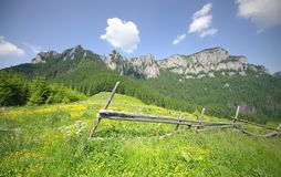 Mountain landscape in summer. Carpathian mountain landscape in summer, Romania Royalty Free Stock Photography