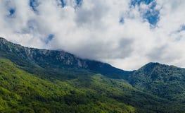 Mountain landscape. Summer in the Bosnia and Herzegovina highlands, mountain landscape Stock Photos
