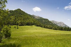 Mountain landscape on a summer day Royalty Free Stock Photography