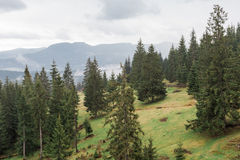 Mountain landscape in summer evening rainy, Romania Stock Images