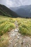 Mountain landscape Summer landscape. Mountain landscape Summer mountain landscape Royalty Free Stock Image