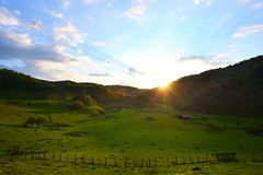 Mountain landscape in summer morning - Fundatura Ponorului Royalty Free Stock Photography
